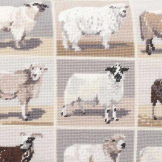 Ehrman-Needlepoint-Beautiful-Sheep-1