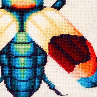 Ehrman-Needlepoint-Open-Winged-Jewel-Beetle-2
